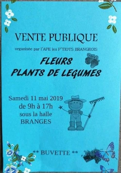 2019-0511-BRANGES-marche-aux-fleurs