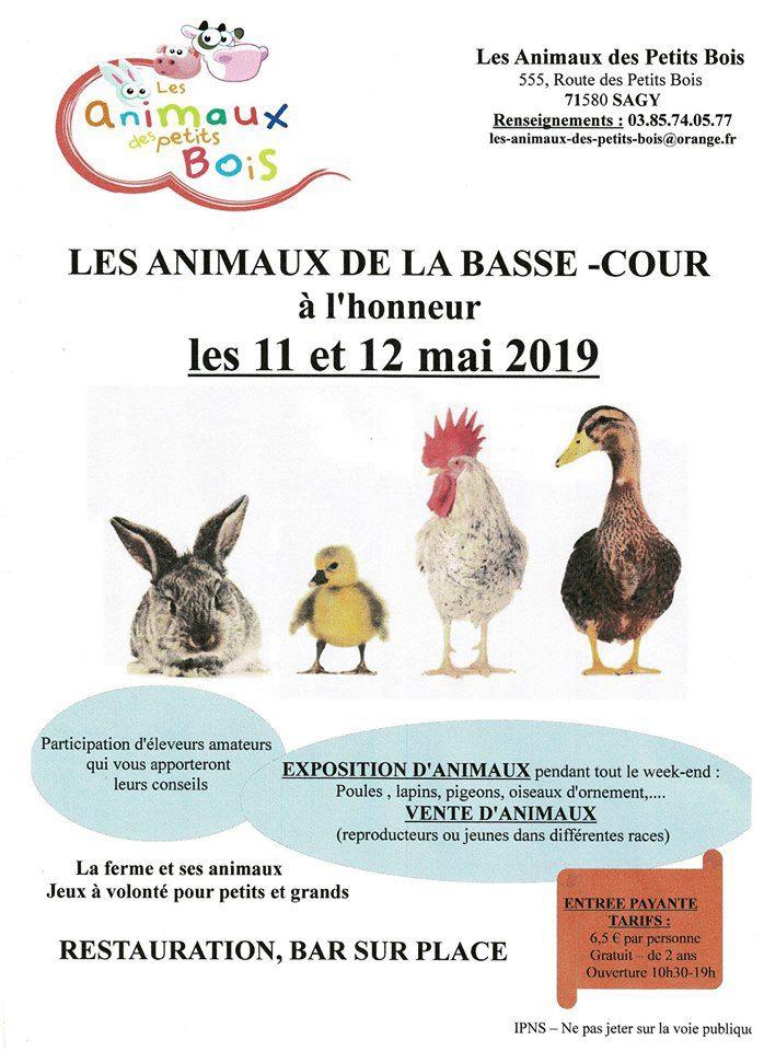 2019-0511-SAGY-animaux-des-petits-bois